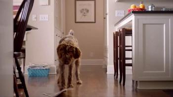 Walgreens TV Spot, 'Give Unexpected Joy This Holiday' - Thumbnail 1