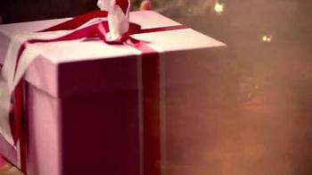 McCormick TV Spot, 'Pure Holiday Flavors' - Thumbnail 1