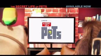 The Secret Life of Pets thumbnail