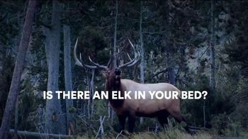 Sleep Number TV Spot, 'Is There an Elk in Your Room?' - 733 commercial airings