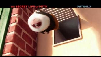The Secret Life of Pets Home Entertainment TV Spot [Spanish] - Thumbnail 1