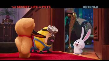 The Secret Life of Pets Home Entertainment TV Spot [Spanish] - Thumbnail 2