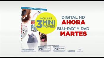 The Secret Life of Pets Home Entertainment TV Spot [Spanish] - Thumbnail 8
