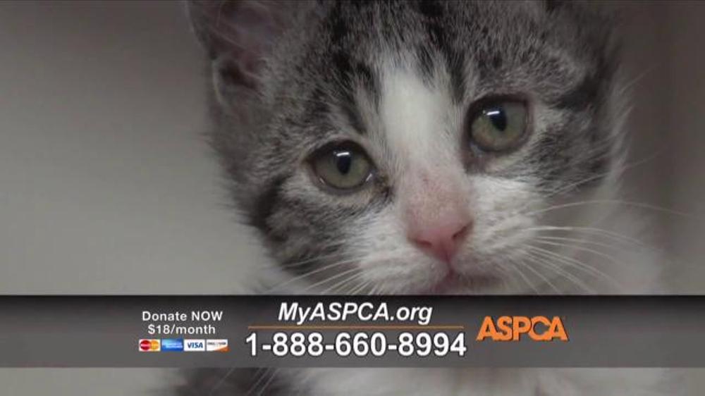ASPCA TV Commercial, 'Holiday Season' Song by Susan Boyle