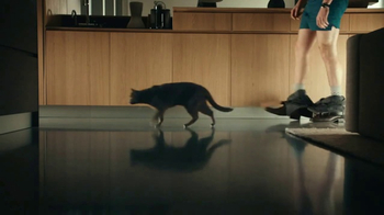 Sheba Perfect Portions TV Spot, 'What Cats Want' Song by REO Speedwagon