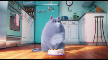 The Secret Life of Pets - Alternate Trailer 35