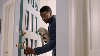 Meijer TV Spot, 'More for Happy Pets' - Thumbnail 1