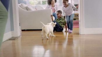 Meijer TV Spot, 'More for Happy Pets' - Thumbnail 4