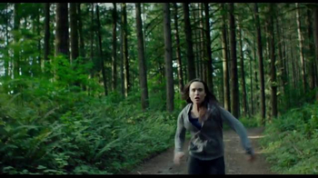 Into the Forest - Thumbnail 8