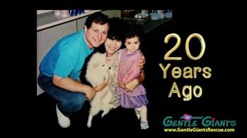 Gentle Giants TV Spot, 'Super Premium Dog Food'