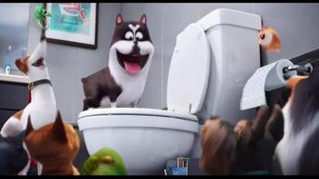 The Secret Life of Pets - Alternate Trailer 27