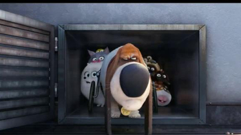 The Secret Life of Pets - Alternate Trailer 28