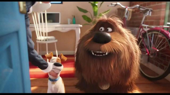 XFINITY Home TV Spot, 'The Secret Life of Pets: Watch Your Pets' - Thumbnail 1