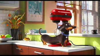 The Secret Life of Pets - Alternate Trailer 29
