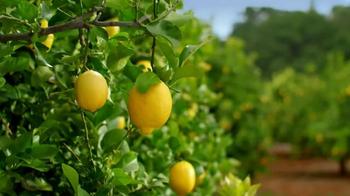 Deloitte TV Spot, 'Lemons'