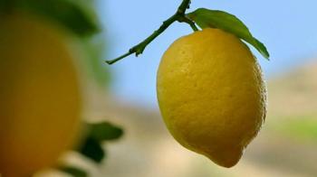 Deloitte TV Spot, 'Lemons' - Thumbnail 5