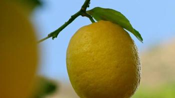 Deloitte TV Spot, 'Lemons' - Thumbnail 7