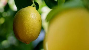 Deloitte TV Spot, 'Lemons' - Thumbnail 8
