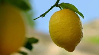 Deloitte TV Spot, 'Lemons' - Thumbnail 9