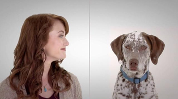 EverQuote TV Spot, 'The Perfect Dog Match' - Thumbnail 3