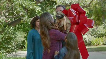 2015 Kia Optima TV Spot, 'Regalo de cumpleaños' [Spanish] - 539 commercial airings