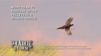 Federal Premium Ammunition Prairie Storm TV Spot, 'Flight Stopper' - Thumbnail 8