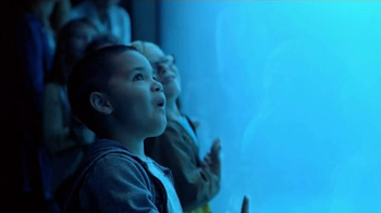 Marshalls TV Spot, 'You Don't Have to Be a Kid' Song by Passion Pit - Thumbnail 1