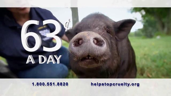 Humane Society TV Spot, 'Stand Up to Violence' - Thumbnail 5