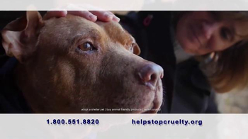Humane Society TV Spot, 'Stand Up to Violence' - 943 commercial airings
