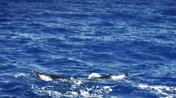 Pacific Life TV Spot, 'Flukes' - Thumbnail 3