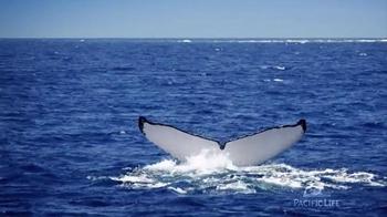 Pacific Life TV Spot, 'Flukes' - Thumbnail 5