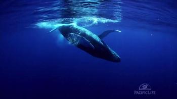 Pacific Life TV Spot, 'Flukes' - Thumbnail 6
