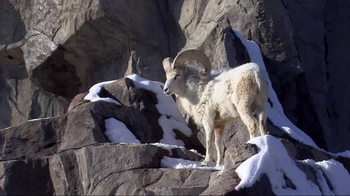 National Park Service TV Spot, 'Rock the Park: Denali National Park' - Thumbnail 7