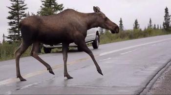 National Park Service TV Spot, 'Rock the Park: Denali National Park' - Thumbnail 8