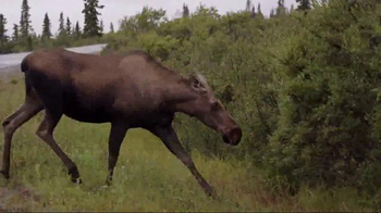 National Park Service TV Spot, 'Rock the Park: Denali National Park' - Thumbnail 9