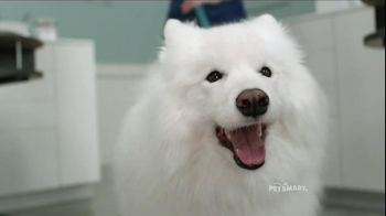 PetSmart Grooming TV Spot, 'Baby, They're Worth It' Song by Fifth Harmony - Thumbnail 1