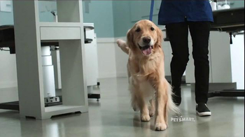 PetSmart Grooming TV Spot, 'Baby, They're Worth It' Song by Fifth Harmony - Thumbnail 5