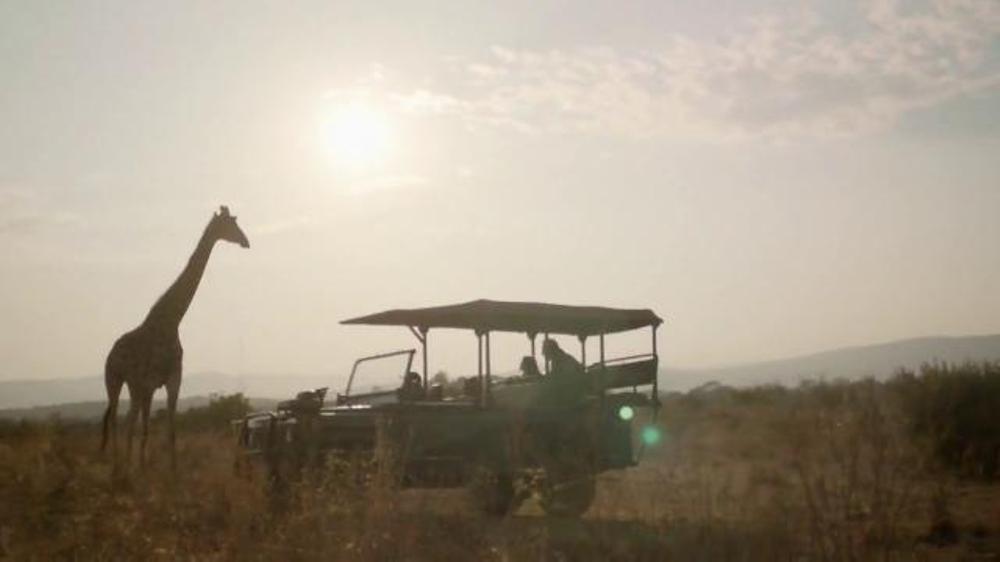 Expedia+ Rewards TV Commercial, 'Safari'