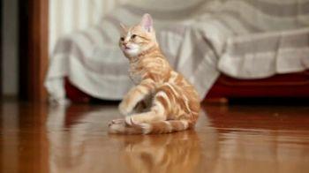 Allegra TV Spot, 'Animals Are Cute When They Sneeze, We Aren't'