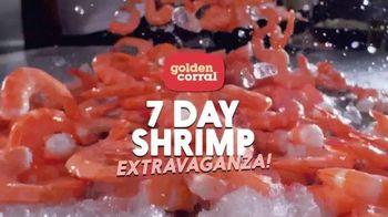 Camarón Extravaganza 7 Días de Golden Corral TV Spot, 'Skewers'  [Spanish] - 528 commercial airings