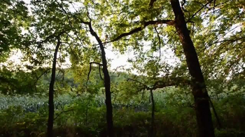 Whitetail Properties TV Spot, 'Large Kansas Hunting Farm for Sale' - Thumbnail 1