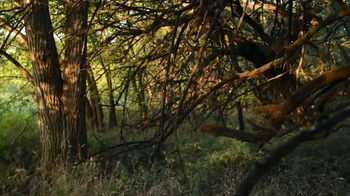 Whitetail Properties TV Spot, 'Large Kansas Hunting Farm for Sale' - Thumbnail 7