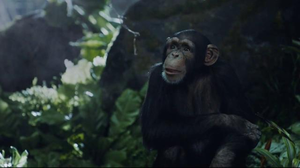 Allstate Bonus Check >> GEICO TV Commercial, 'Tarzan Fights Over Directions: It's What You Do' - iSpot.tv
