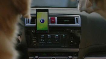 Subaru TV Spot, 'Dog Tested: Phone Navigation' - 1301 commercial airings