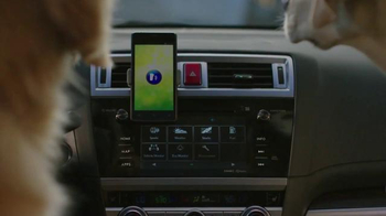 Subaru TV Spot, \'Dog Tested: Phone Navigation\'