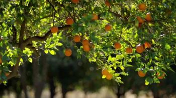 Simply Orange Juice TV Spot, 'Destiny' - Thumbnail 2