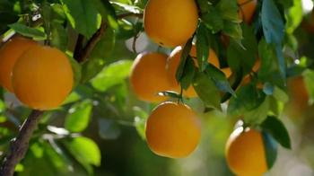 Simply Orange Juice TV Spot, 'Destiny' - Thumbnail 3