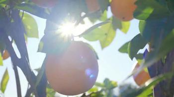 Simply Orange Juice TV Spot, 'Destiny' - Thumbnail 4