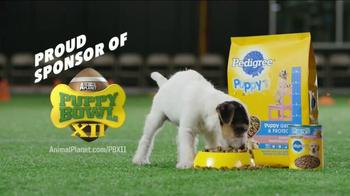 Pedigree Puppy TV Spot, 'Puppy Bowl Tryouts No. 1: Dedication' - Thumbnail 10