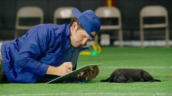 Pedigree Puppy TV Spot, 'Puppy Bowl Tryouts No. 1: Dedication'